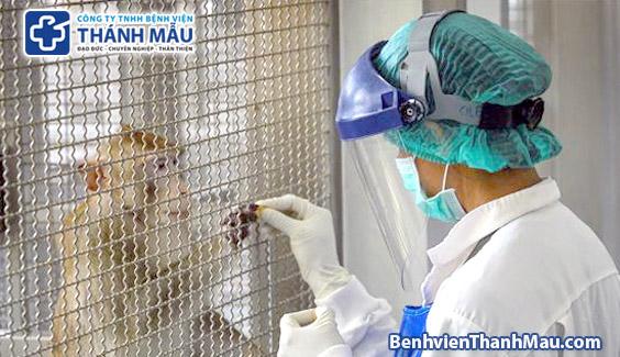 thai lan thu nghiem thanh cong vaccine covid-19 tren khi va chuot  Thái Lan thử thành công vaccine ngừa COVID-19 trên khỉ, chuột thai lan thu nghiem thanh cong vaccine covid 19 tren khi va chuot