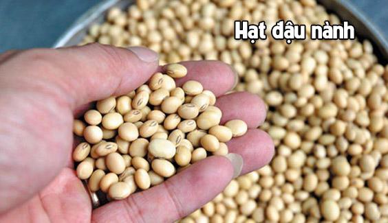 hat dau nanh rat giau protein  6 loại rau, hạt chứa nhiều protein còn hơn cả thịt hat dau nanh rat giau protein