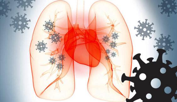 virus ncov benh covid19 tan cong tim ncov heart  Virus nCoV gây tổn thương chưa từng thấy cho tim virus ncov benh covid19 tan cong tim ncov heart